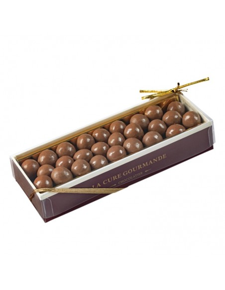 Hazelnuts Covered with Chocolate